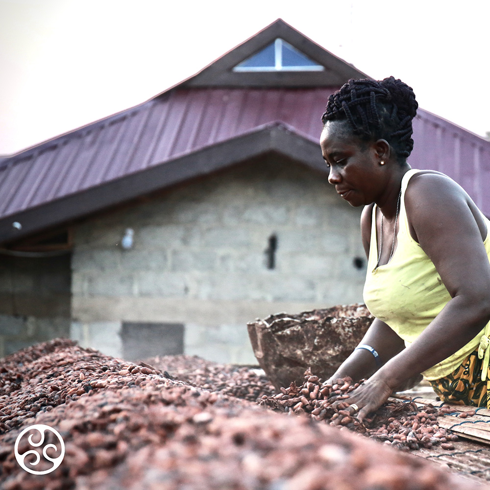 Farmer processing cocoa beans