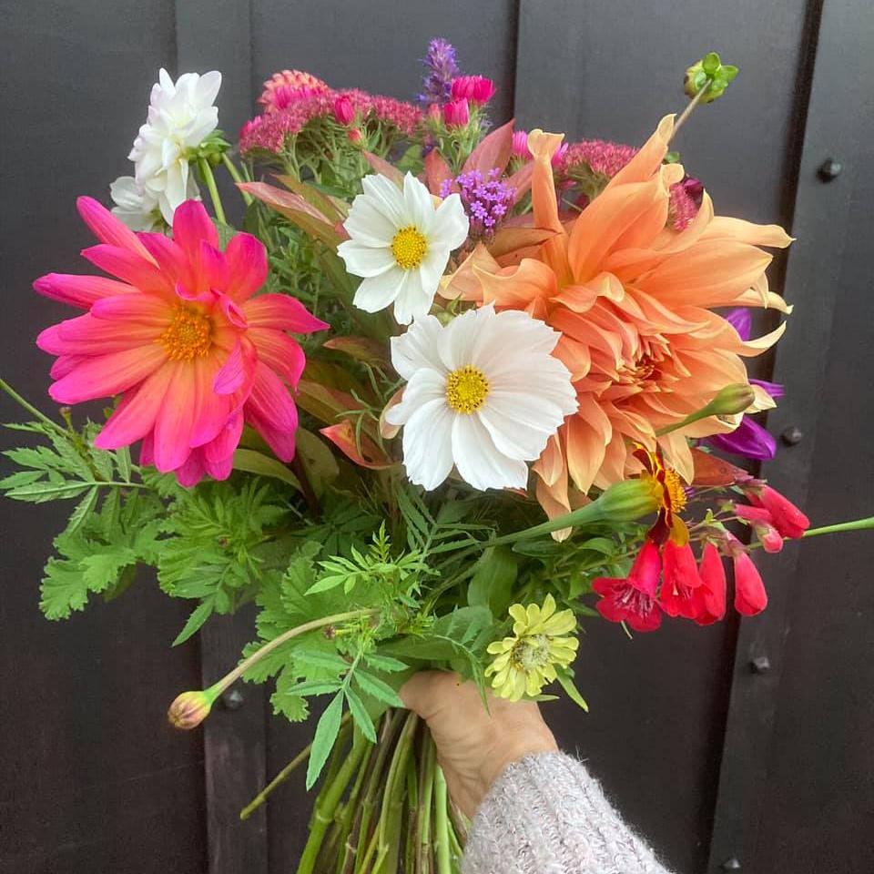Bright British Flowers