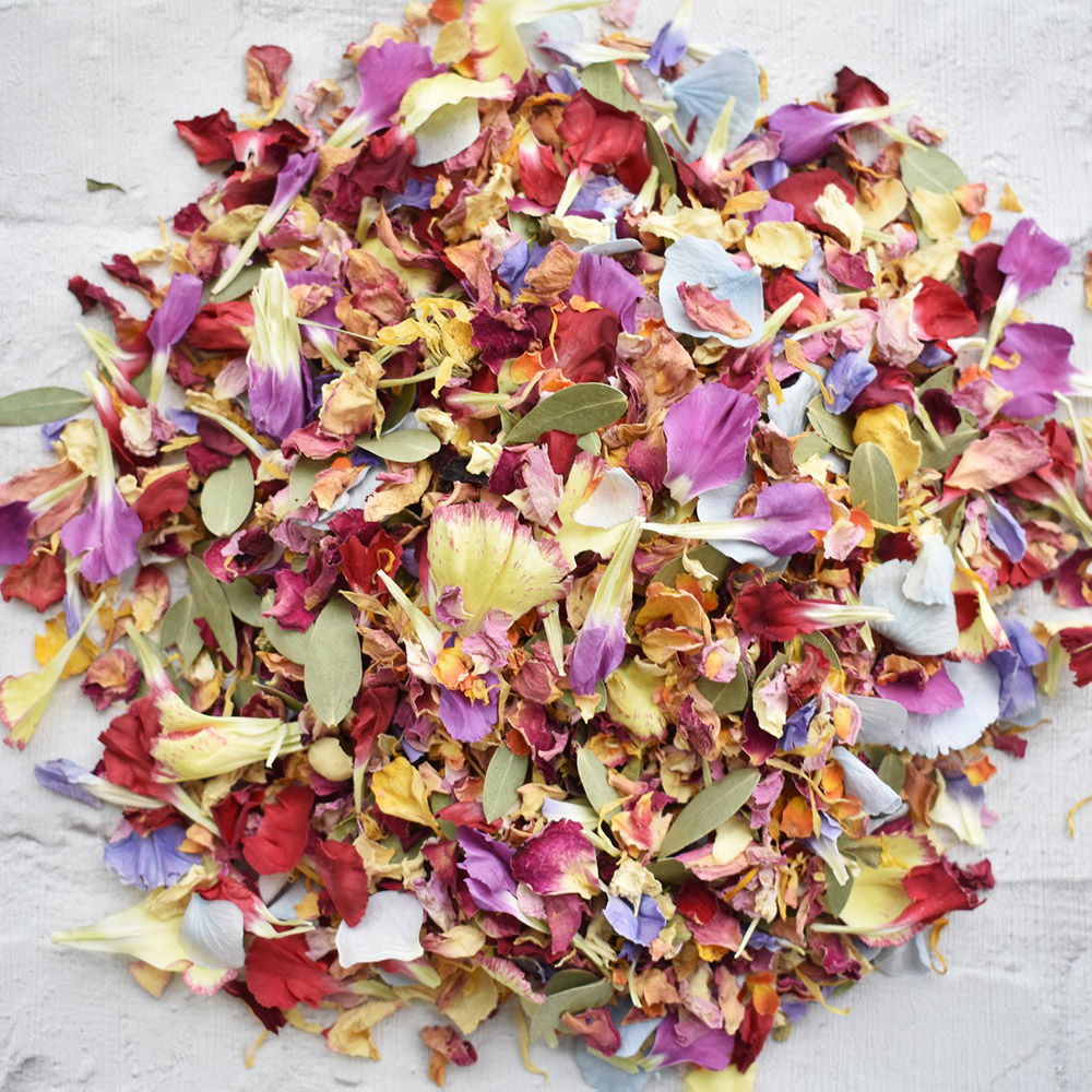 Bright Petal Confetti